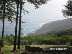 Holiday in Big Sur